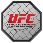 How to Bet the UFC